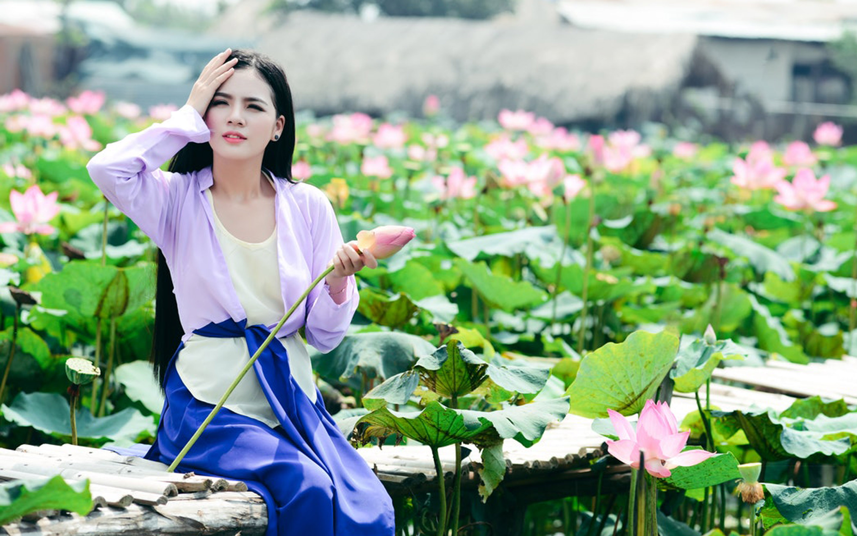 Beautiful Woman Vietnam With Lotus