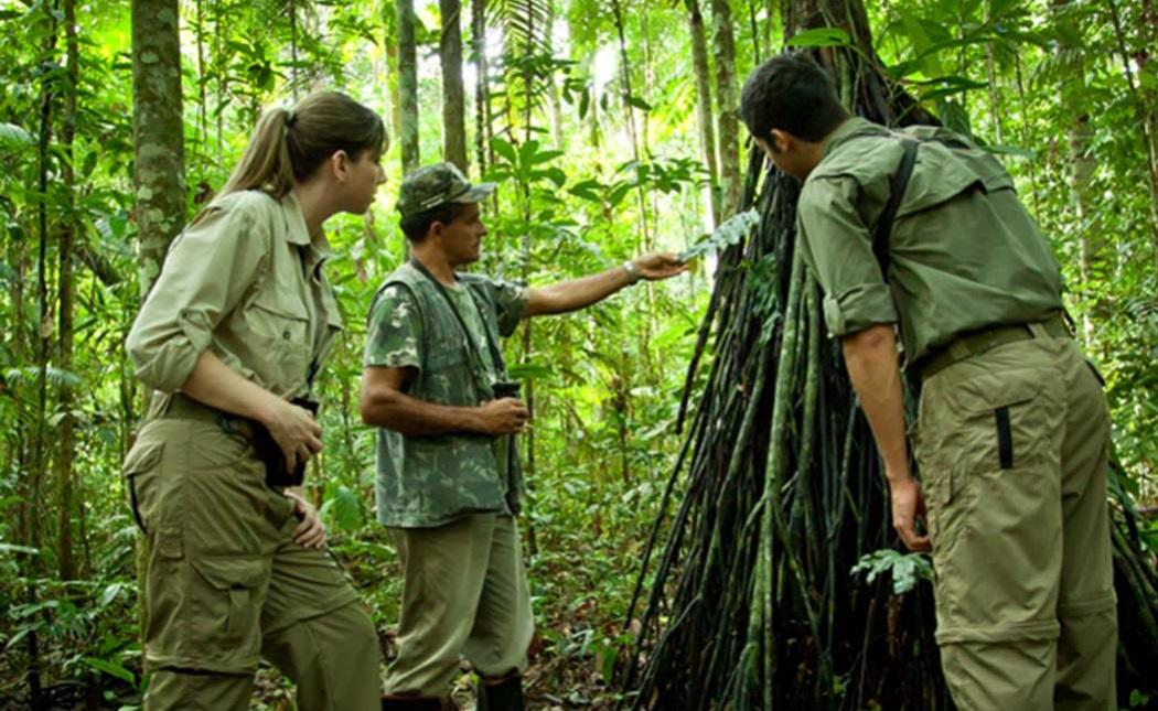 Trekking - Jungle Jek